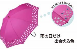カインズ傘